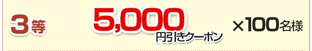 3等:5,000円引きクーポン×100名様