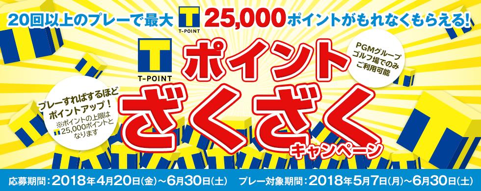 20回以上のプレーで最大Tポイント25,000ポイントがもれなくもらえる! ポイントざくざくキャンペーン