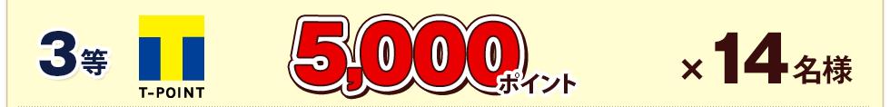 3等 5,000ポイント×14名様
