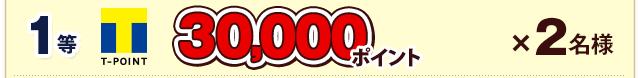 1等 30,000ポイント×2名様