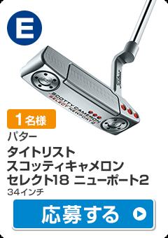 【ドライバー】タイトリスト スコッティキャメロン セレクト 18 ニューポート2(RH34)