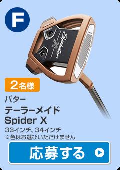 【パター】テーラーメイド Spider X