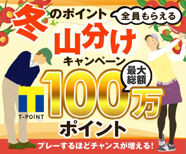 冬のポイント山分けキャンペーン 最大総額100万ポイント