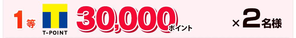 1等:Tポイント 30,000ポイント×2名様