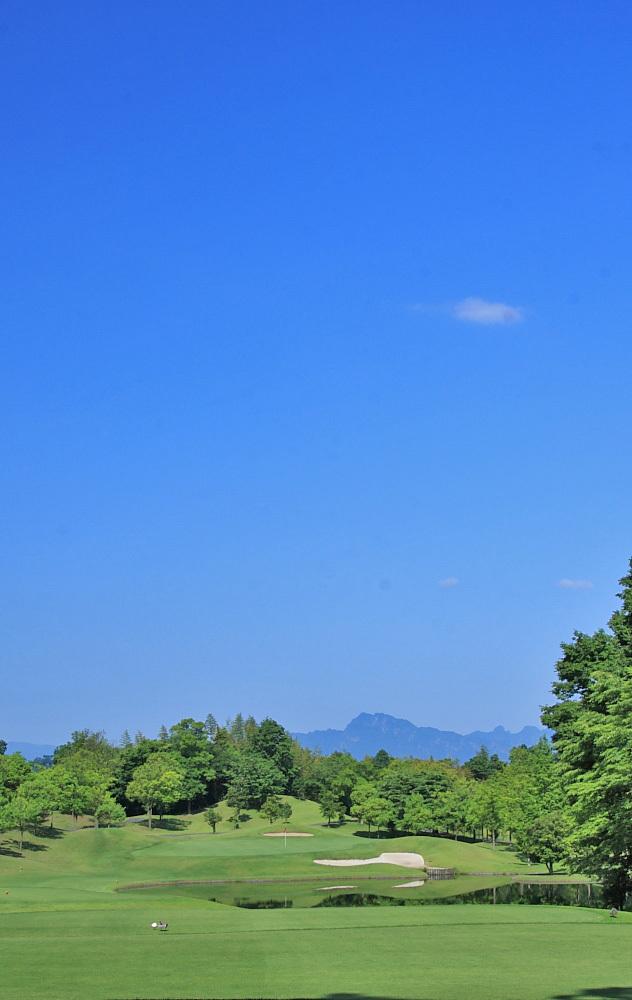 ノース コース pgm 富岡 クラブ カントリー